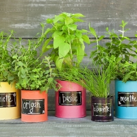 Pots à fines herbes top tendance!