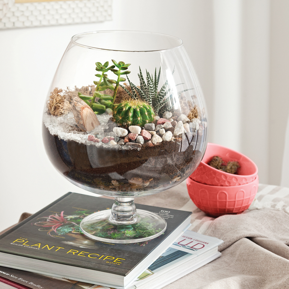 en tapes cr er un terrarium parfait en tapes. Black Bedroom Furniture Sets. Home Design Ideas