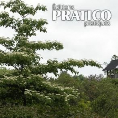 Quel arbre planter en ville trucs et conseils jardinage et ext rieur pratico pratique - Quel arbre planter devant une maison ...