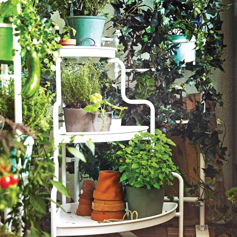 comment faire un petit potager sur le patio trucs et conseils jardinage et ext rieur. Black Bedroom Furniture Sets. Home Design Ideas