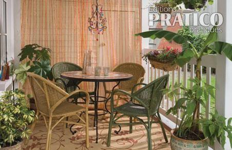 plante tropicale balcon