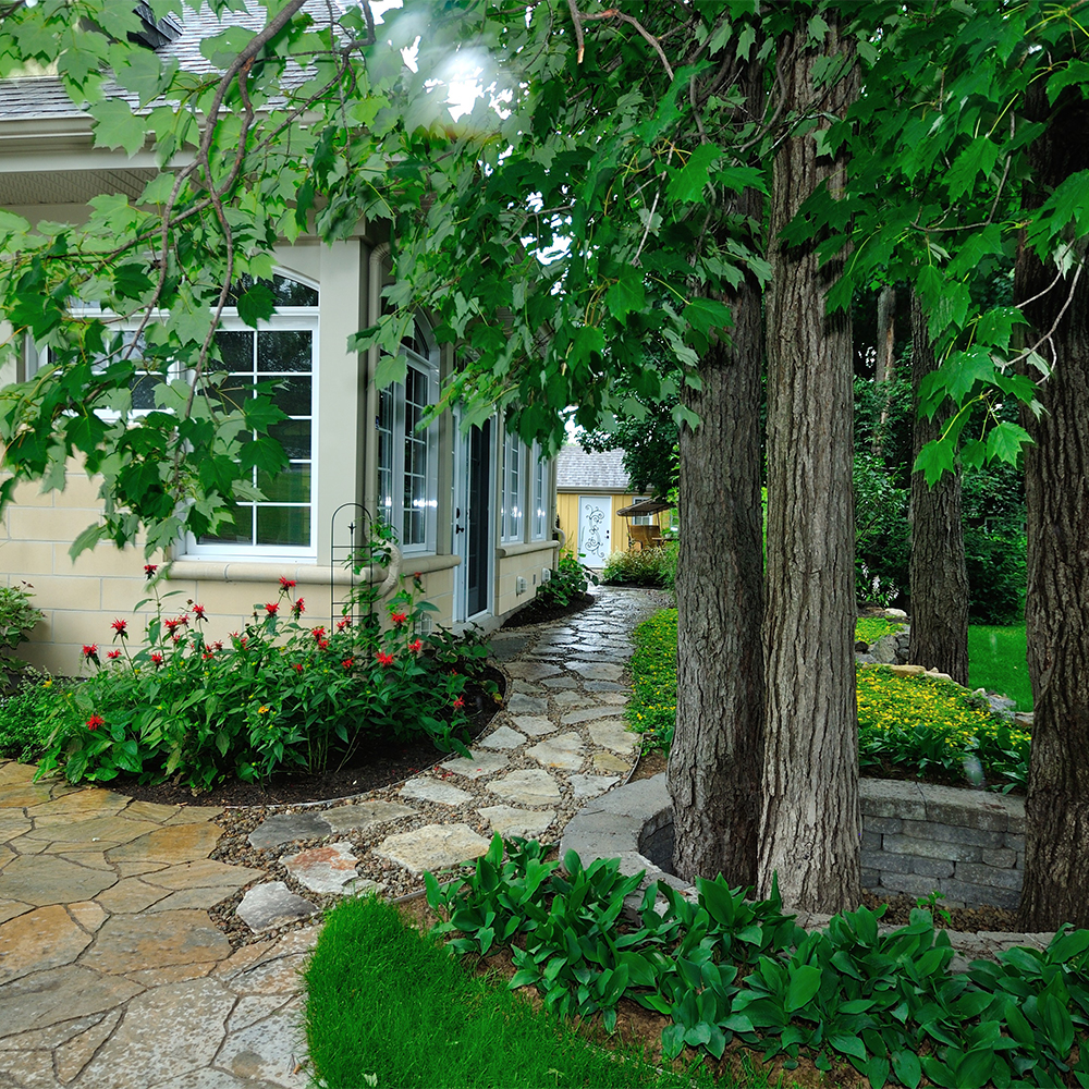 Jardin proven al cour inspirations jardinage et for Amenagement jardin provencal