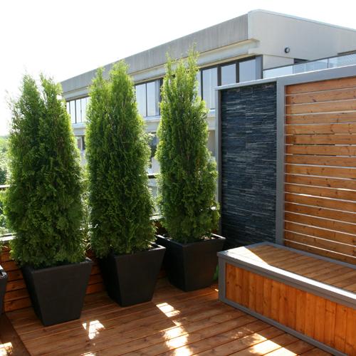 terrasse plein soleil balcon inspirations jardinage et ext rieur pratico pratique. Black Bedroom Furniture Sets. Home Design Ideas