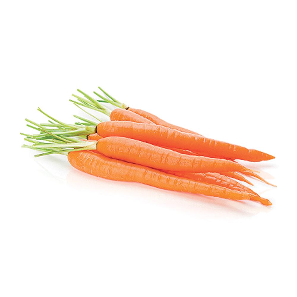 Les carottes bonnes pour la vision nutrition cuisine et nutrition pratico pratique - Robot pour raper les carottes ...